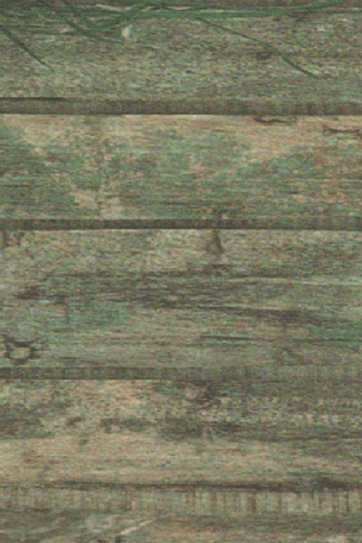 Tarmarind Green