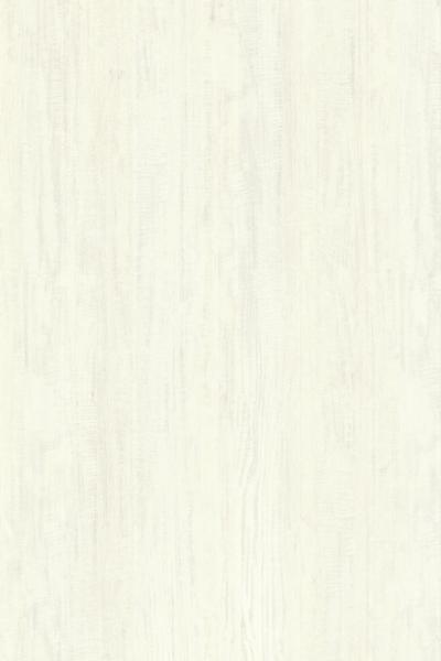 White Sycamore